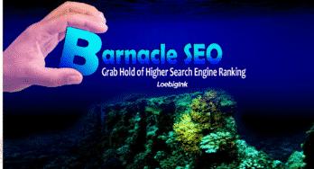 Barnacle SEO graphic